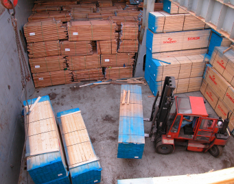 Forklift in hold TP